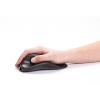 Souris HandShoe